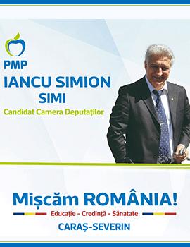 Iancu SIMION - Simi, Deputat